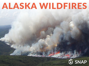 alaska wildfires